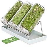 Cressery® Sprossenglas Keimglas 3er Set mit Deckel & Sieb aus hochwertigem Edelstahl für Sprossenzucht | Keimglas für Sprossen | Sprossen Keimgerät