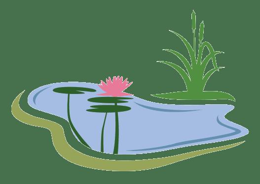 Teichratgeber Gartenteich