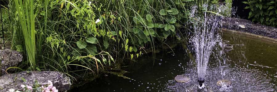 Teichtechnik am Teich