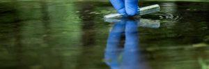 Wasserwerte im Teich